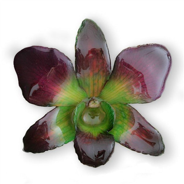 Purple Green Dendrobium Orchid pin.
