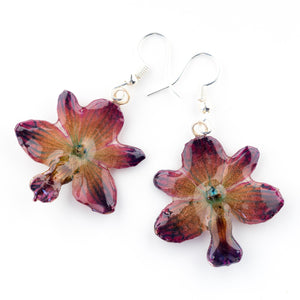 Purple Rhynchocentrum Orchid Earrings