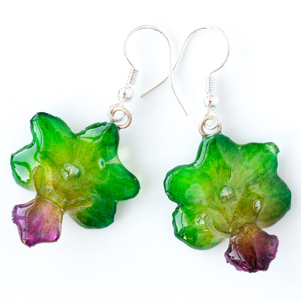 Green Rhynchocentrum Orchid Earrings