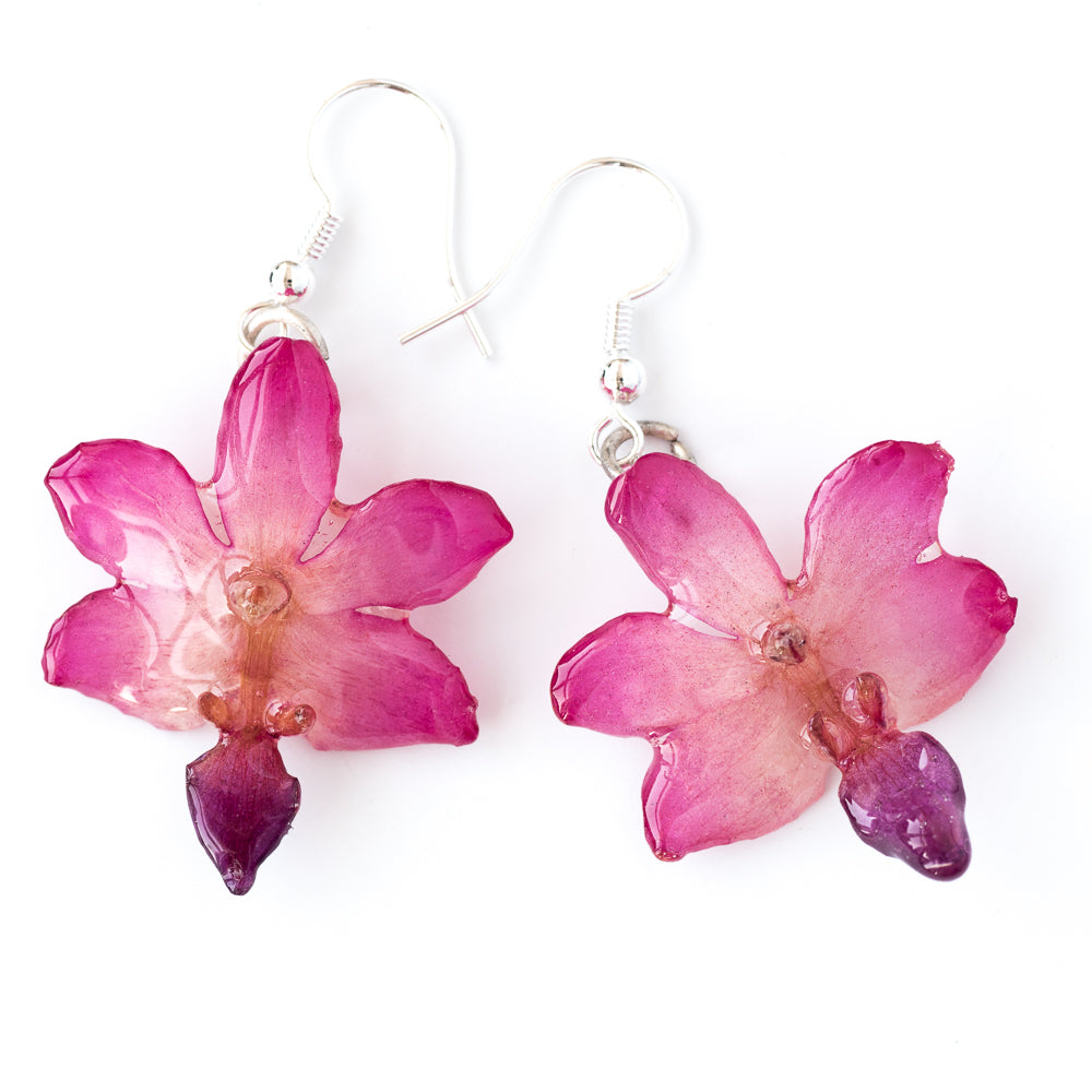 Flower Earrings Pink-Purple Doritis Orchid Earrings