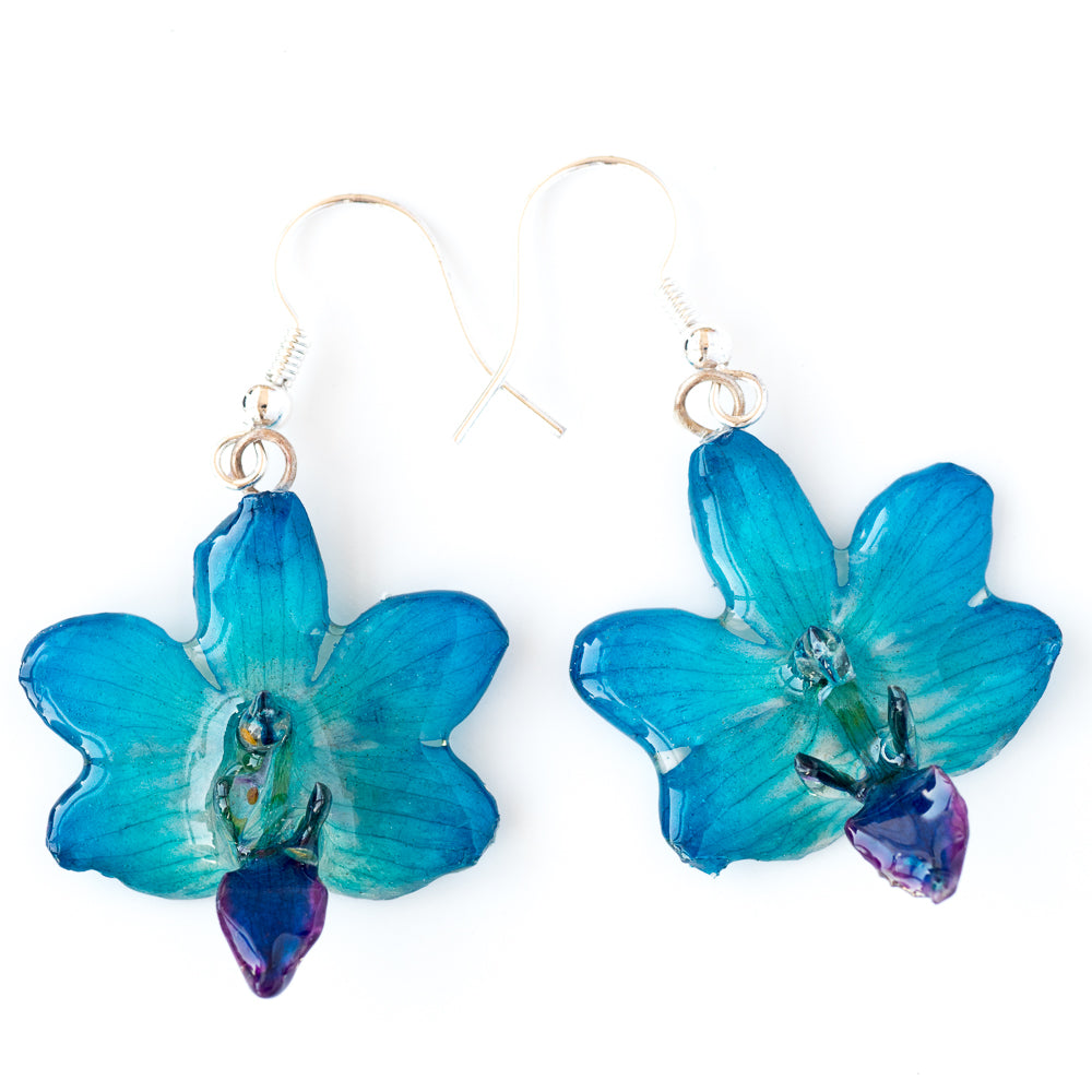 Flower Earrings Blue Doritis Orchid Earrings