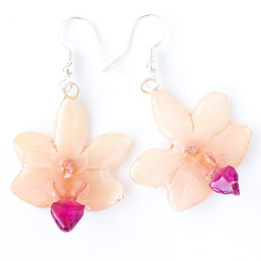 White-Purple Doritis Orchid Earrings
