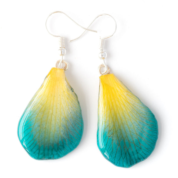 Blue-Yellow Dendrobium Orchid Petal Earrings