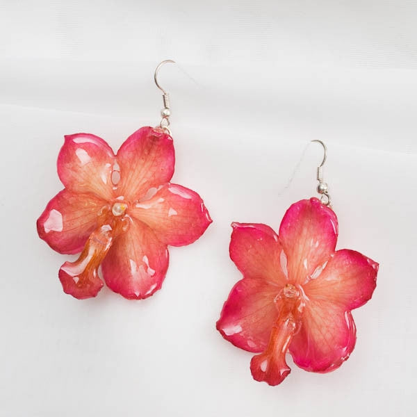 Pink White Vascostylis real orchid earrings