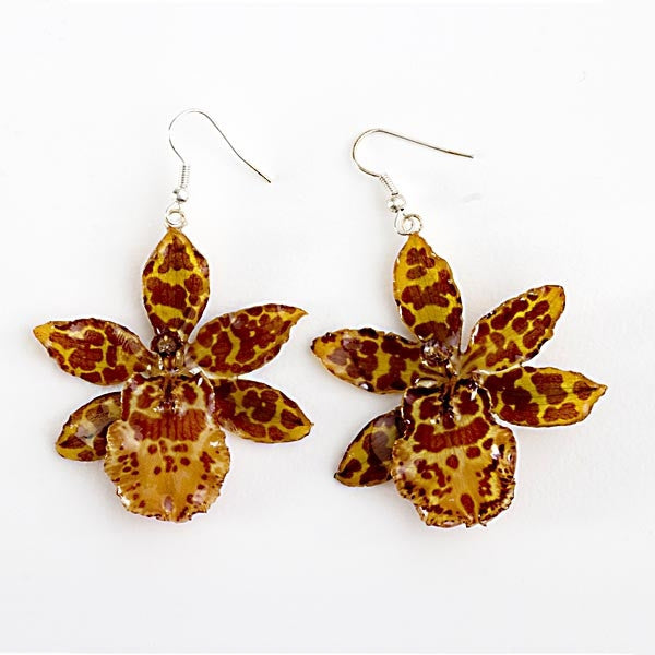 Yellow Tiger Orchid Earrings