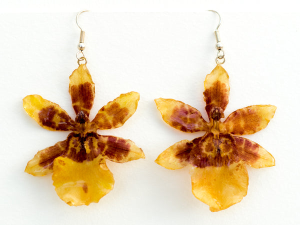 Yellow-Brown Tiger Orchid Earrings