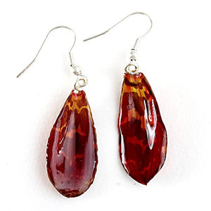 Red Tiger Cat Orchid Flower Petal Earrings