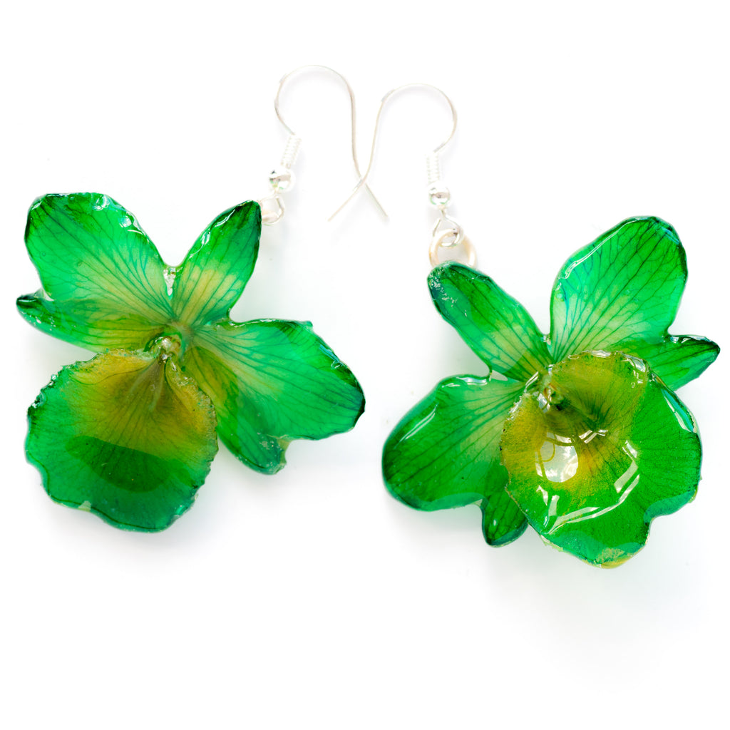Flower Earrings Green Chrysotoxum Orchid Earrings
