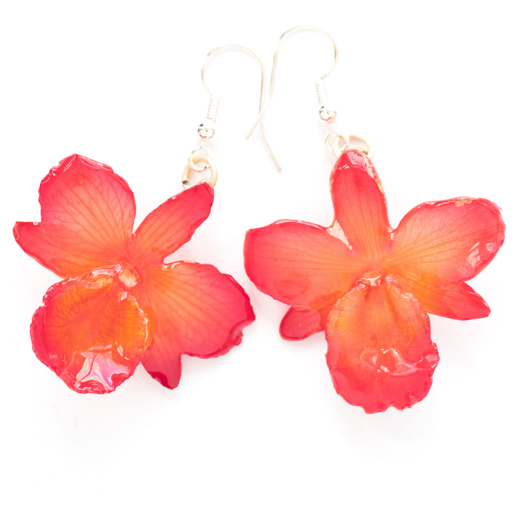 Flower Earrings Pink Chrysotoxum Orchid Earrings