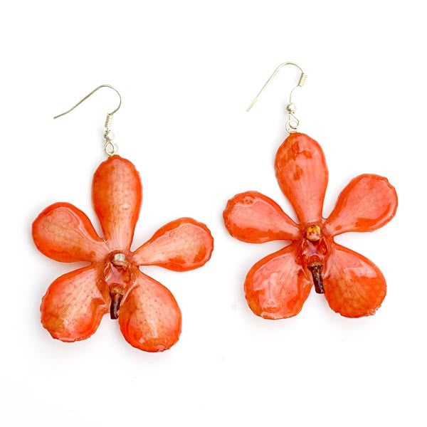 Flower Earrings Orange Mokara Orchid Earrings