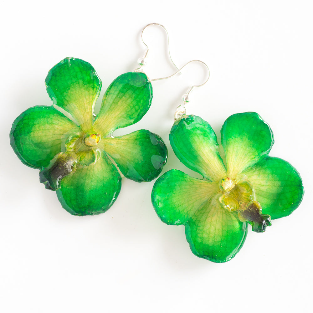 Flower Earrings Green Vanda orchid earrings