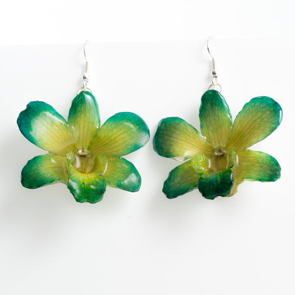 Green Yellow Dendrobium Fancy Orchid Earrings