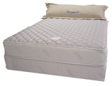 Twin Size Sleepwell® Moonlight Bay Plush