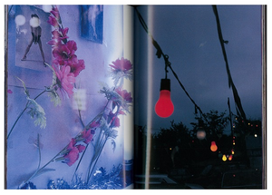 DAIDO MORIYAMA: IN COLOR WITH NOCTURNAL NUDE PRINT