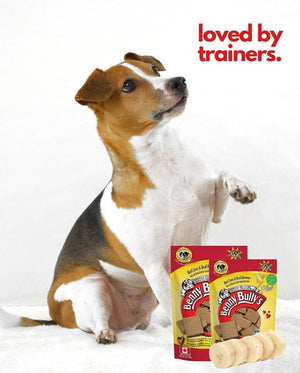 Benny Bullys Liver Plus Banana Dog Treats