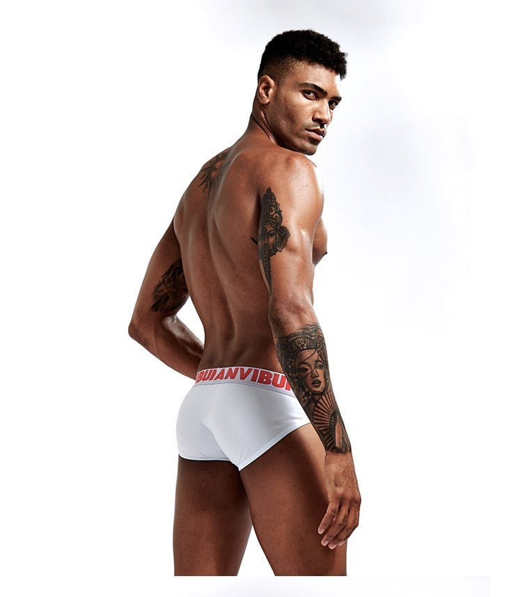 LANVIBUM Briefs