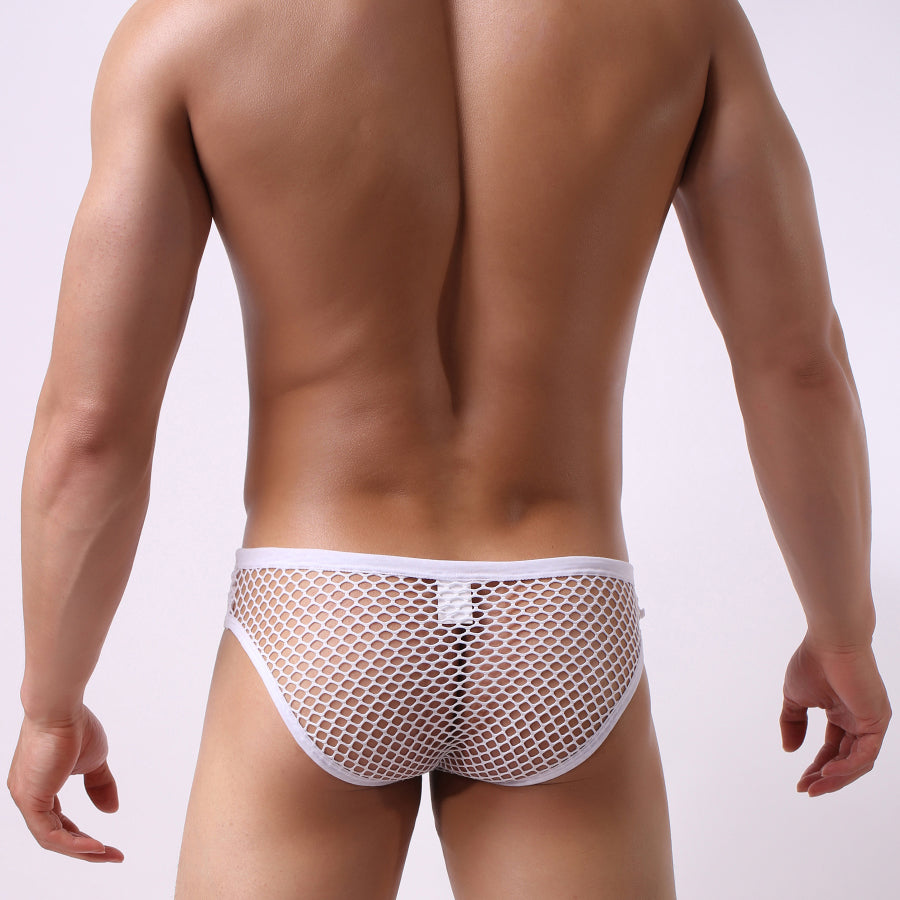 Fishnet Briefs