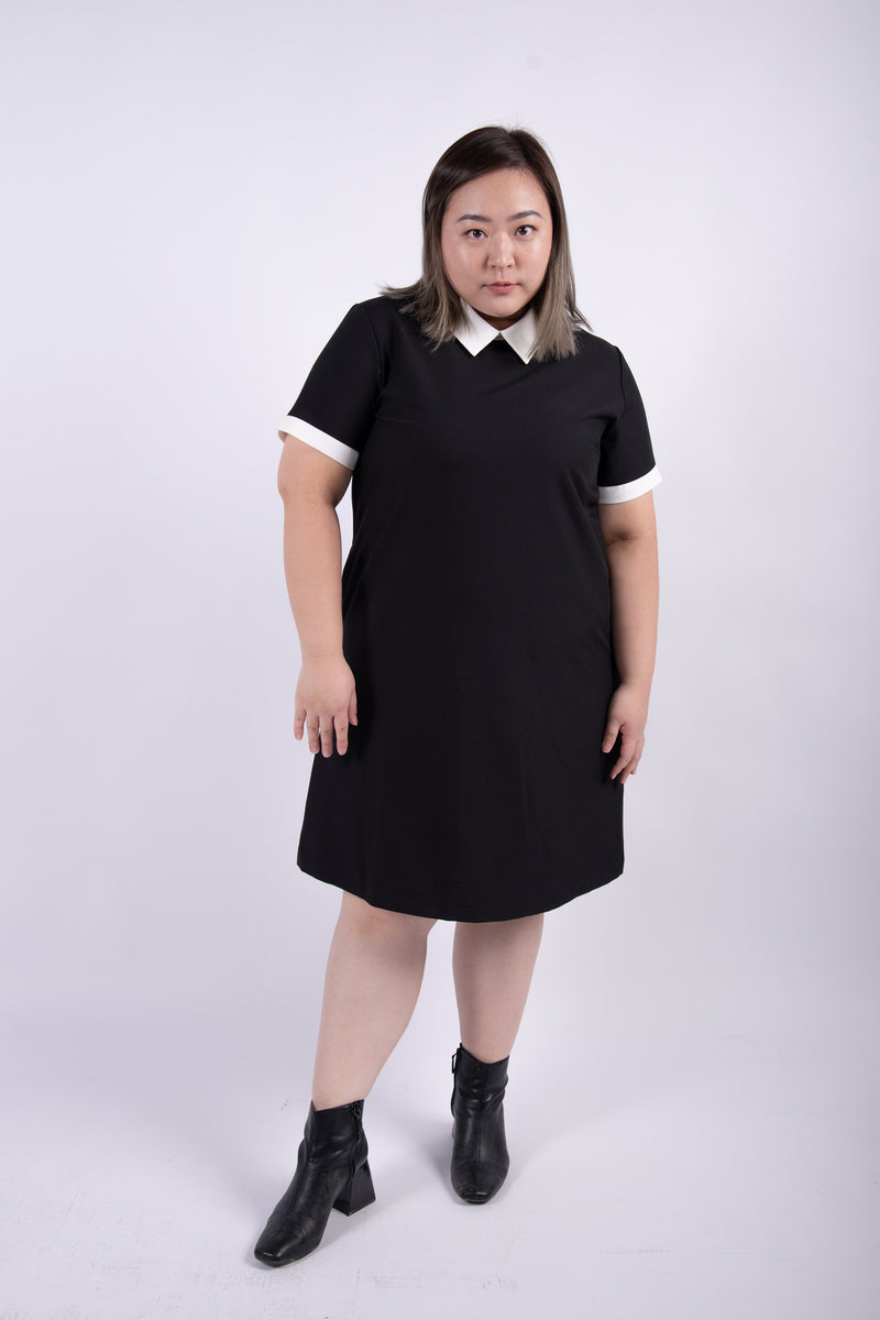 Peter Pan Collar Dress In Black