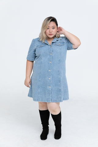 Button Front Denim Shirt Dress