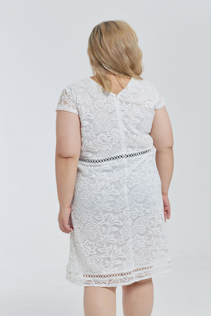 Broderie Lace Dress In White