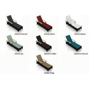 Arbor Chaise Lounge with Cushion