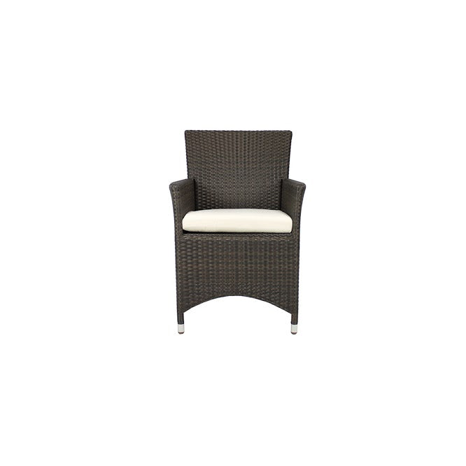 St Tropez Dining Arm Chair in Espresso (Set of 2)