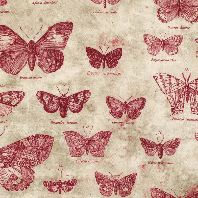 Eclectic Elements Foundations Butterflight Red Fabric Yardage PWTH004.RED | Ann's By Design