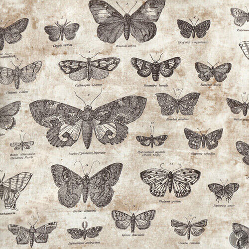 Eclectic Elements Foundations Butterflight Taupe Fabric Yardage PWTH004.TAUPE | Ann's By Design