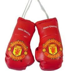 Man Utd Boxing Gloves