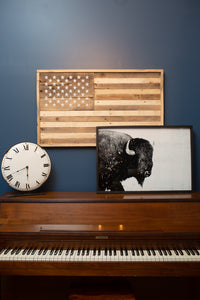 Black and White Buffalo Print