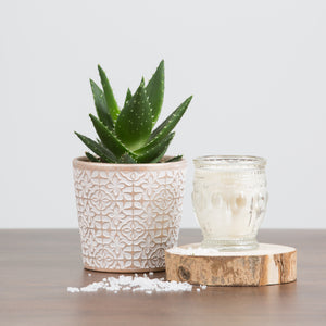 Embossed Candle-Cactus & Sea Salt