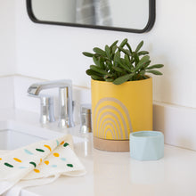 Yellow Rainbow Planter with Saucer