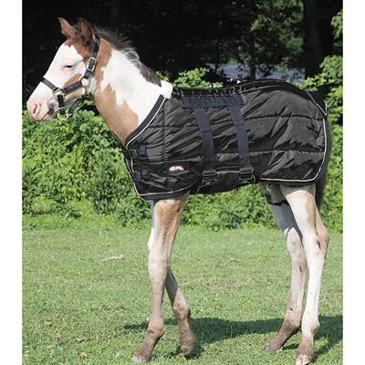Weaver Black Foal Blanket - 420Denier