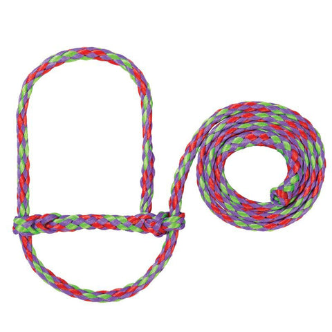 Multicolored Sheep or Goat Halter