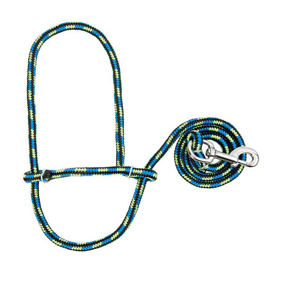 Multicolored Sheep Halter