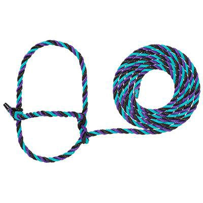 Weaver Leather- Purple and Teal Cattle Rope Halter