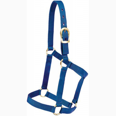 Mustang Blue Poly Regular Economy Halter