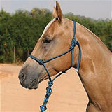 Professional's Choice Chocolate/Turquoise Rope Halter