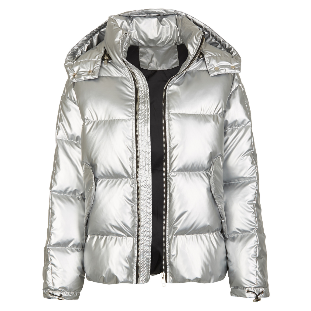 Arctic Space Down Jacket Silver