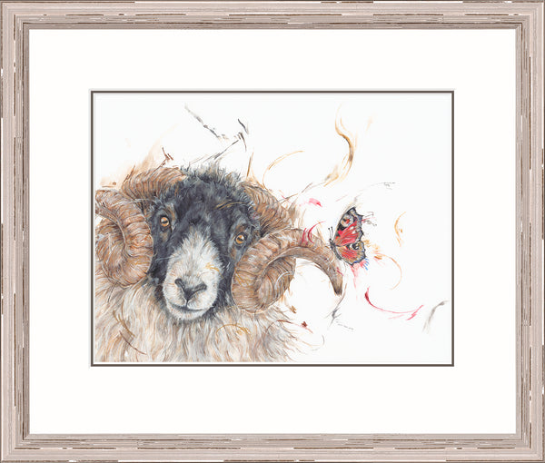 'Hey ewe!' by Aaminah Snowdon *NEW