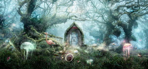 The Open Door - Alice in Wonderland by Mark Davies *NEW