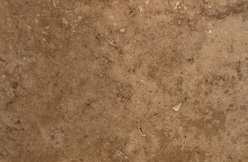 "Chocolate (Noche) Travertine Tile - 12"" x 12"" x 3/8"" Honed"