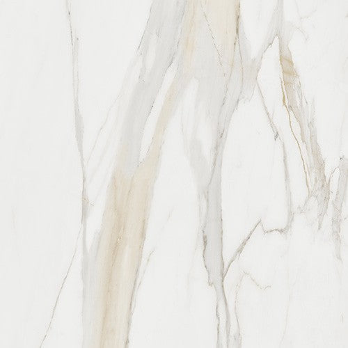 "Magnum Calacatta Gold Porcelain Tile - 32"" x 32"" x 1/4"" Polished"