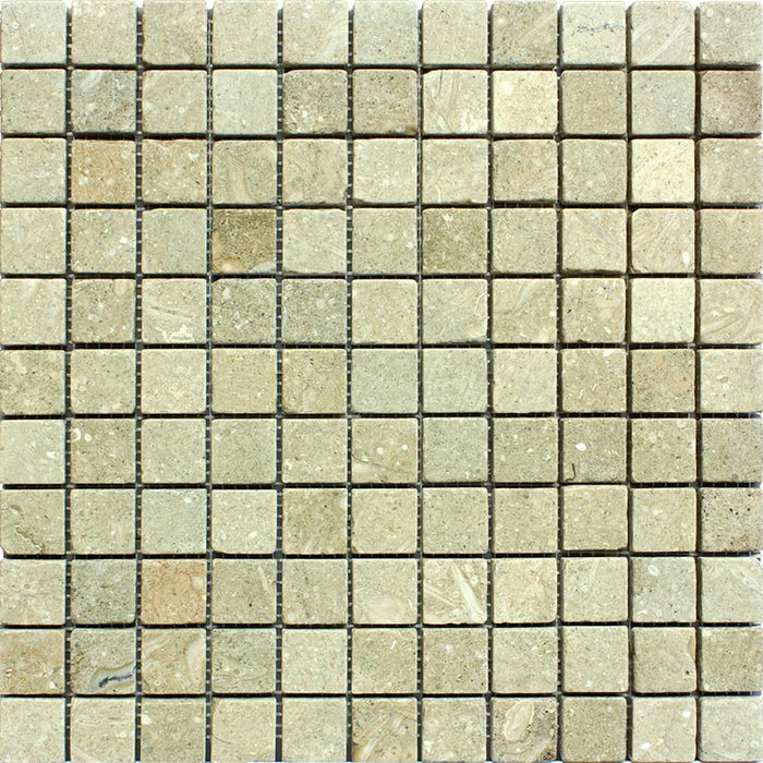 "Sea Grass Limestone Mosaic - 1"" x 1"" Tumbled"