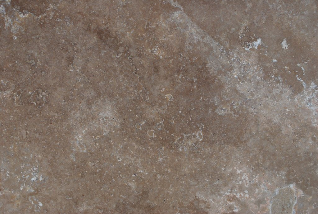 "Full Tile Sample - Anthill Travertine Tile - 24"" x 24"" x 3/8"" Honed"