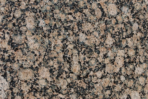 "Polished Baltic Brown Granite Tile - 12"" x 12"" x 3/8"" Polished"