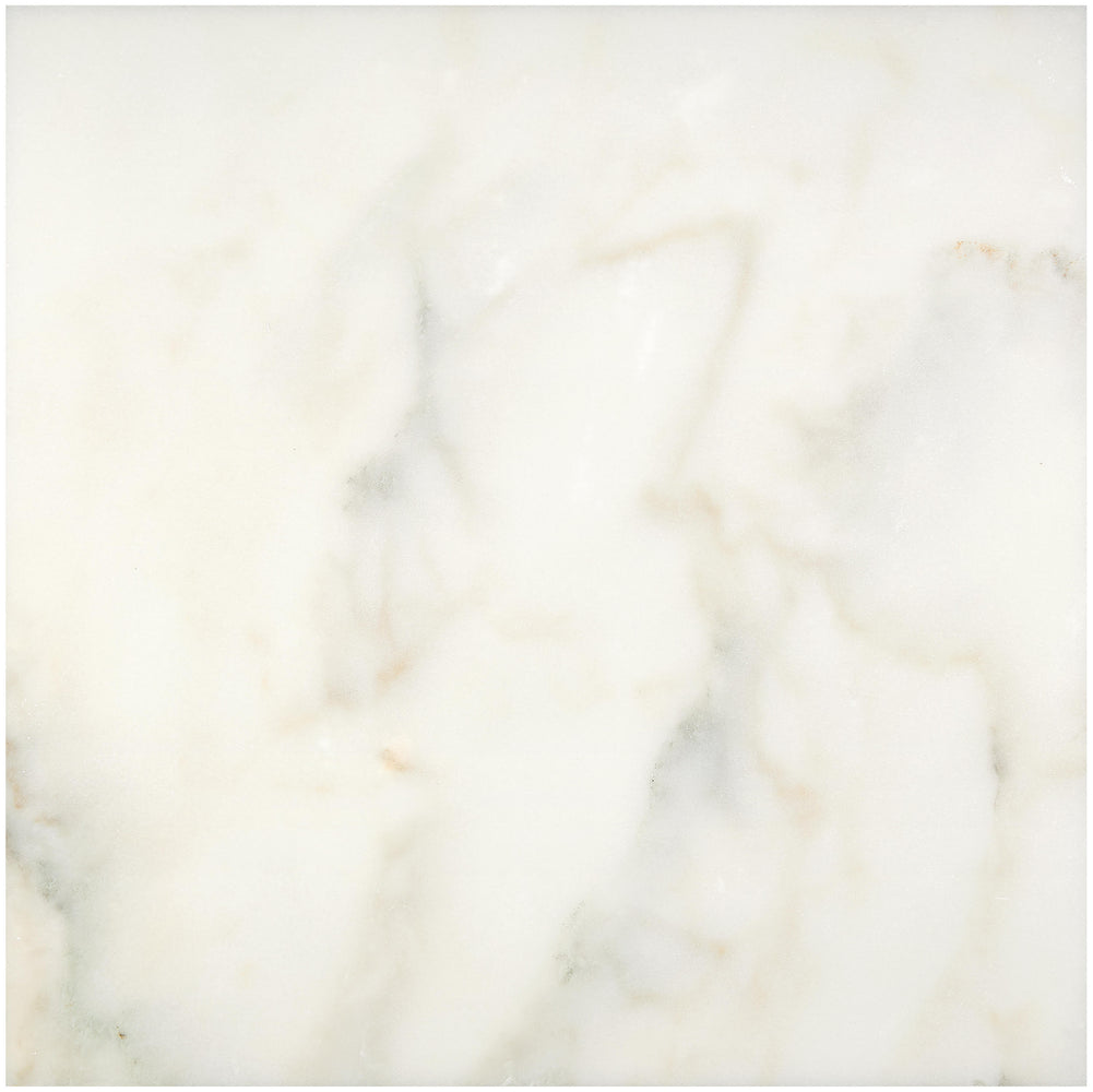 "Full Tile Sample - Calacatta Oliva Marble Tile - 6"" x 12"" x 3/8"" Honed"