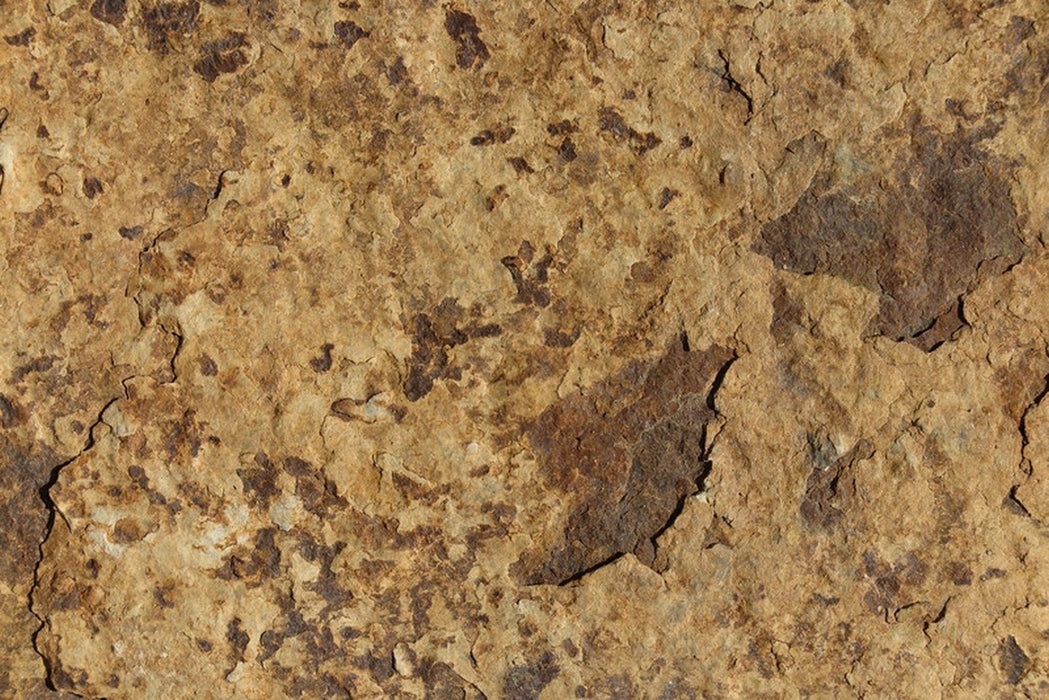 "Carioca Gold Slate Tile - 12"" x 24"" x 5/8"" Natural Cleft Face, Gauged Back"