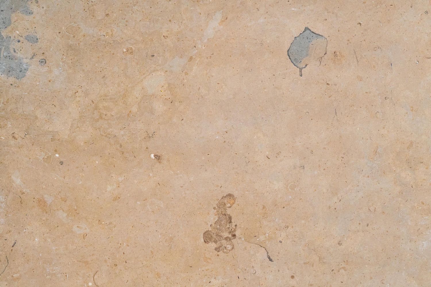 "Full Tile Sample - Lagos Gold Limestone Tile - 12"" x 12"" x 3/8"" Honed"