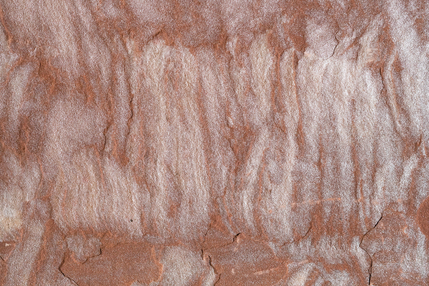 "Full Tile Sample - Pink Leather Sandstone Tile - 16"" x 16"" x 1/2"" Natural Cleft Face & Back"